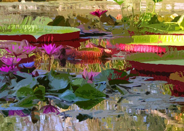 Water Lilies Greeting Card featuring the photograph Passion for Beauty by John Lautermilch