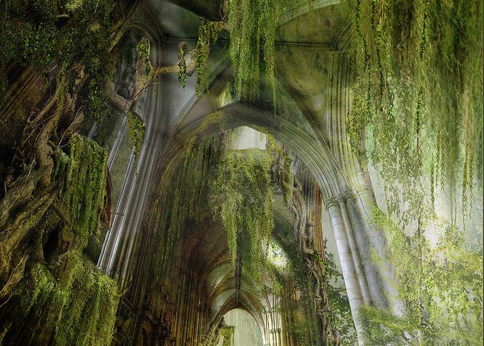 Westminster Greeting Card featuring the photograph Path To Inner Peace by Mary Hood