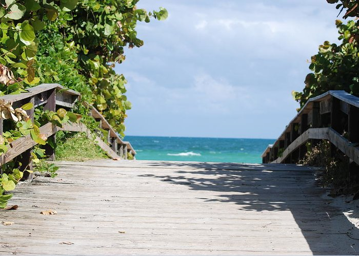 Sea Scape Greeting Card featuring the photograph Path To Paradise by Rob Hans