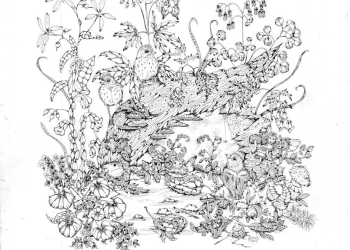Birds Greeting Card featuring the drawing Patience by Donna Genovese