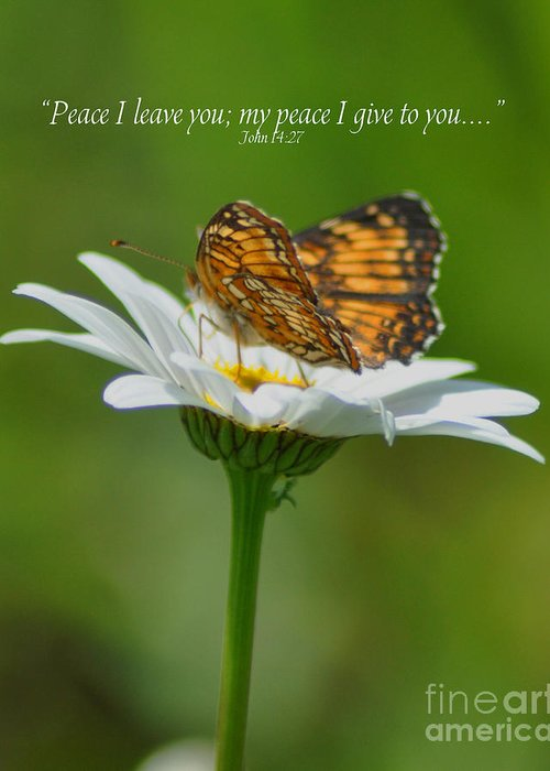 Diane Berry Greeting Card featuring the photograph Peace I Leave You by Diane E Berry