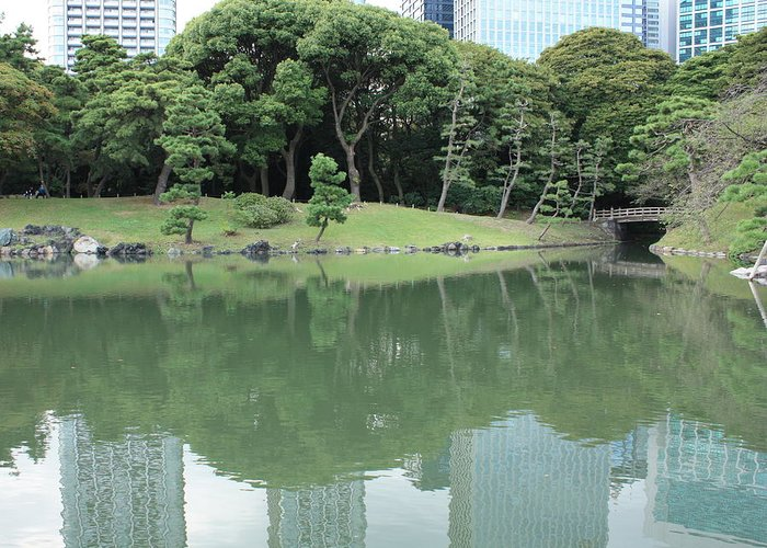 Peaceful Greeting Card featuring the photograph Peaceful Bridge In Tokyo Park by Carol Groenen