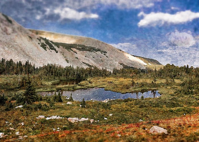 Textured Prints Greeting Card featuring the photograph Peaceful Meadow by Garett Gabriel