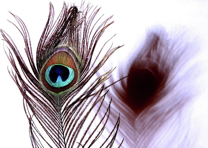 Photograph Greeting Card featuring the photograph Peacock 8 - Doppleganger by Stormshade Designs