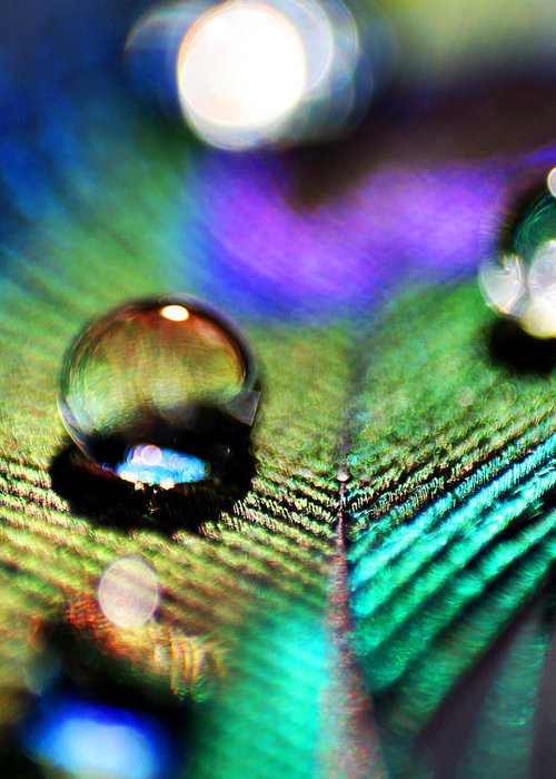 Water Greeting Card featuring the photograph Peacock Jewel by Kerry Langel