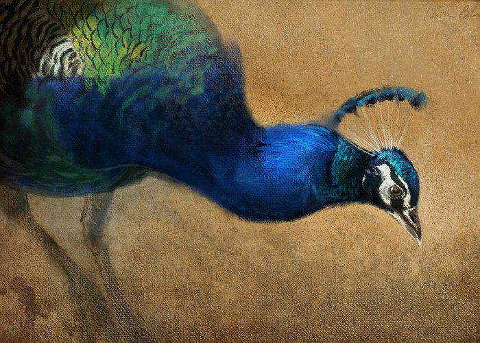 Peacocks Greeting Cards