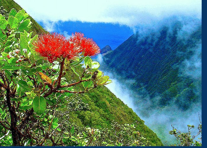 Ohia Lehua Greeting Card featuring the photograph Peles Flower by James Temple