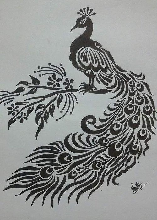 Pencil Drawings Peacock