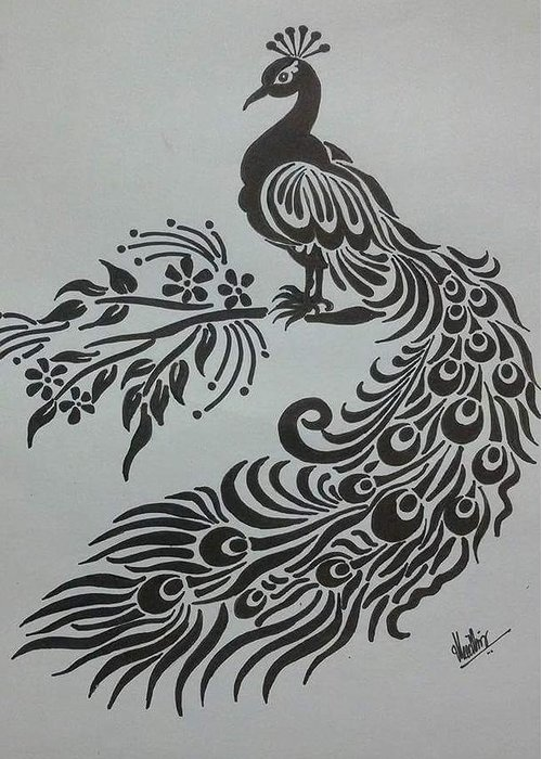 Peacock greeting card featuring the drawing pencil sketch of peacock by kanaga rajesh