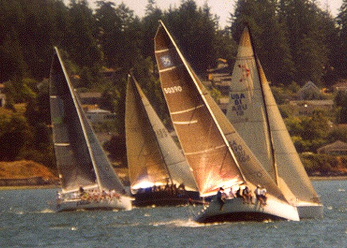 Boats Greeting Card featuring the photograph Penn Cove Sailing by Valerie Moore