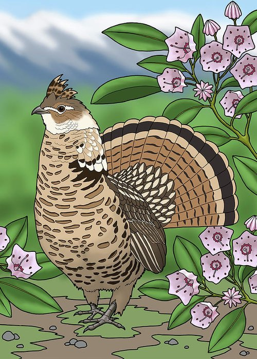 birds greeting card featuring the painting pennsylvania state bird grouse and flower laurel by crista forest