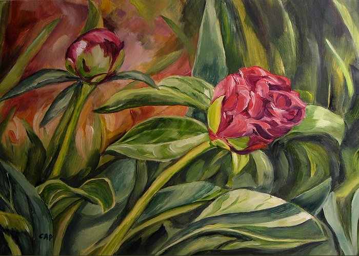 Garden Greeting Card featuring the painting Peony Buds by Cheryl Pass