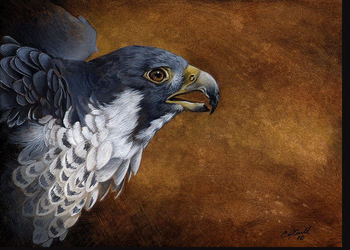 Art Greeting Card featuring the painting Peregrine by Eric Dull