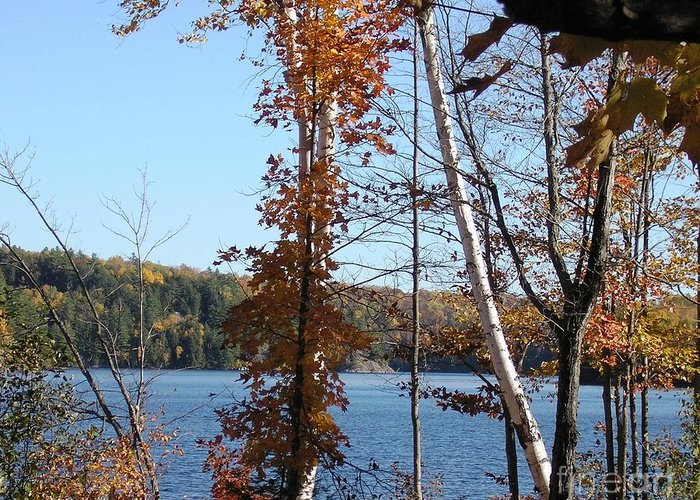 Fall Greeting Card featuring the photograph Perfect Autumn Day by Margaret Hamilton