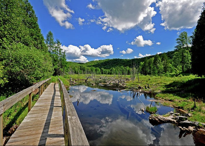Michigan Hiking Greeting Card featuring the photograph Perfect Day by Russell Todd