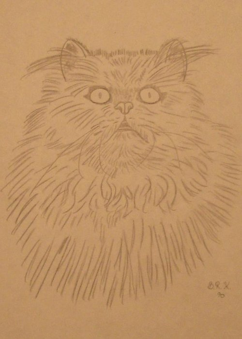 Cat Greeting Card featuring the painting Persian Cat 1 by Bo Klinge