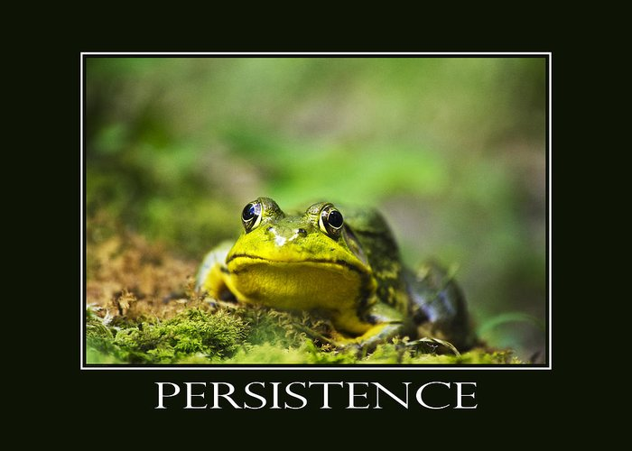 Persistence Greeting Card featuring the photograph Persistence Inspirational Motivational Poster Art by Christina Rollo