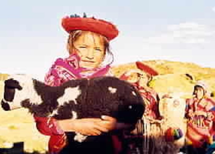 Peru Greeting Card featuring the photograph Peruvian Girl by Kathy Schumann