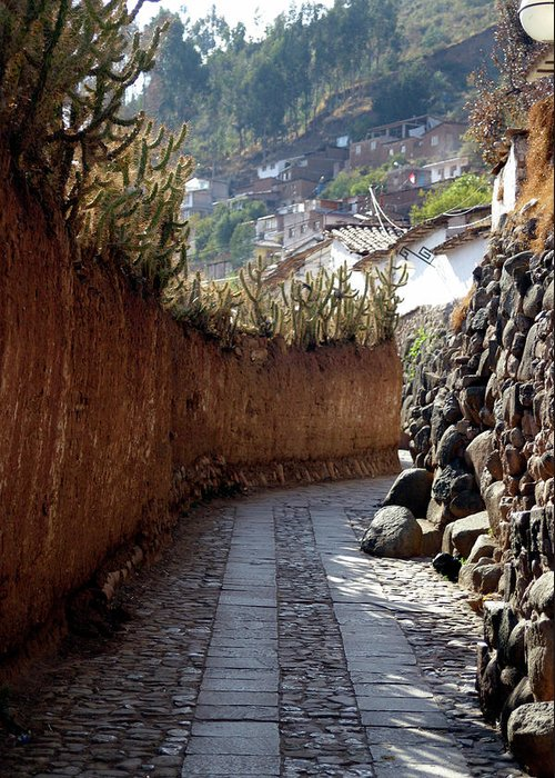 Photograph Greeting Card featuring the photograph Peruvian Pathway by Susan Schumann
