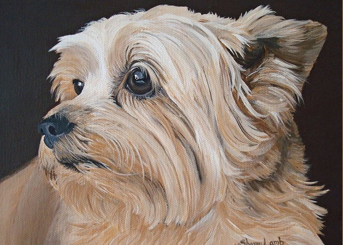 Pet Portrait Painting Dog Cairn Terrier Cats Horses Labs Sheperds Greeting Card featuring the painting Pet Portrait Painting Commission Cairn Terrier by Sharon Lamb