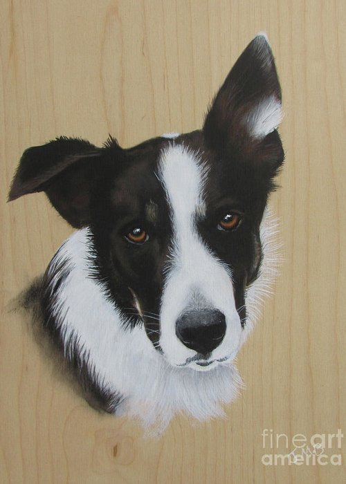 Pete Greeting Card featuring the painting Pete by Janice M Booth