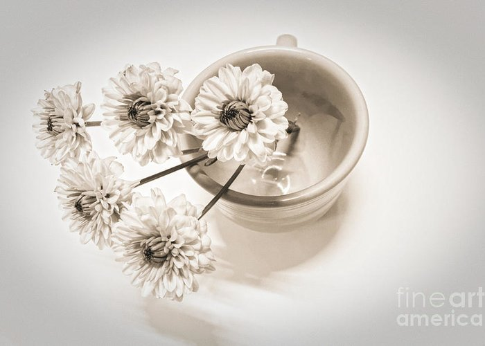 Cup Greeting Card featuring the photograph Petit Bouquet by Onedayoneimage Photography