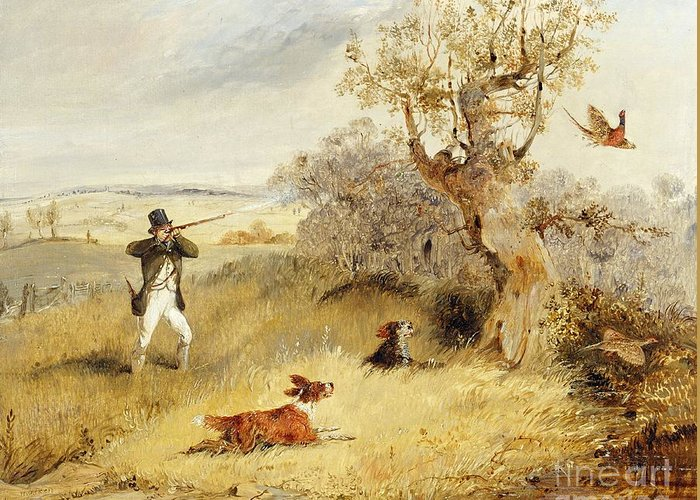 Sporting Dog Greeting Cards
