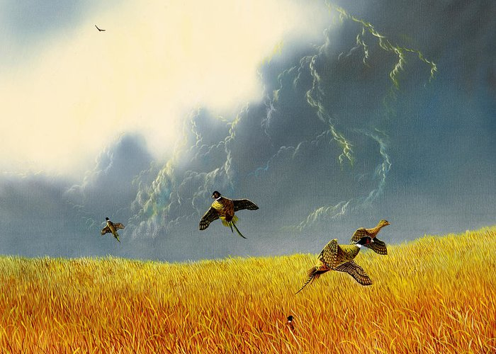 Pheasants Greeting Card featuring the painting Pheasants On The Rise by Don Griffiths