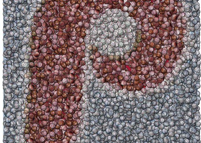 Mlb Greeting Card featuring the mixed media Philidelphia Phillies Baseballs Mosaic by Paul Van Scott