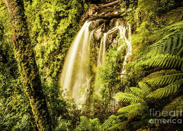 Falls Greeting Card featuring the photograph Philosopher Falls, Western Tasmania by Jorgo Photography - Wall Art Gallery