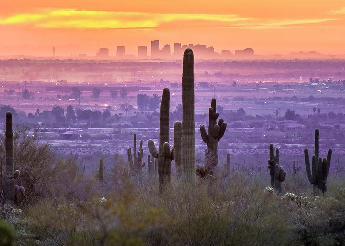 Sunrise Greeting Card featuring the photograph Phoenix Dawn by Jim Painter