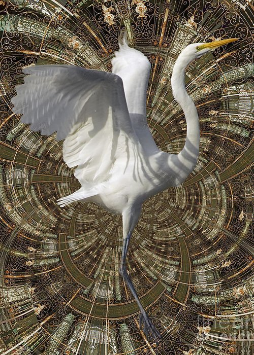 Bird Greeting Card featuring the digital art Phoenix Rising by Chuck Brittenham