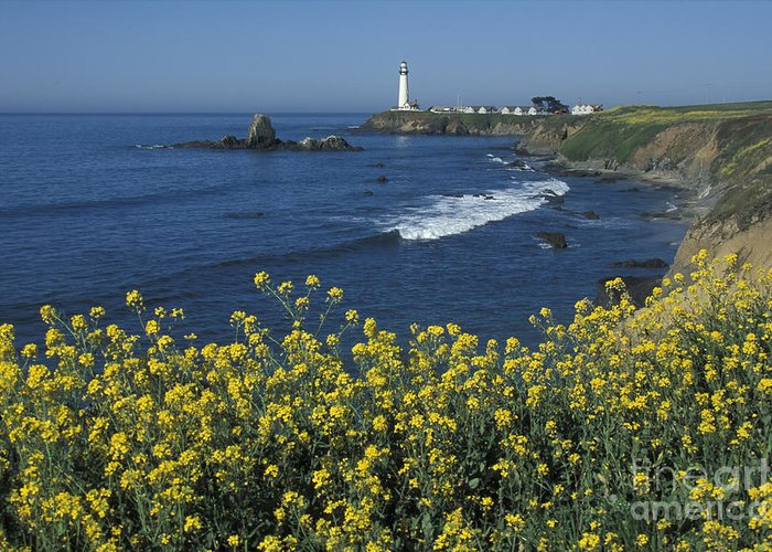 California Greeting Card featuring the photograph Pigeon Point Panorama by Stan and Anne Foster