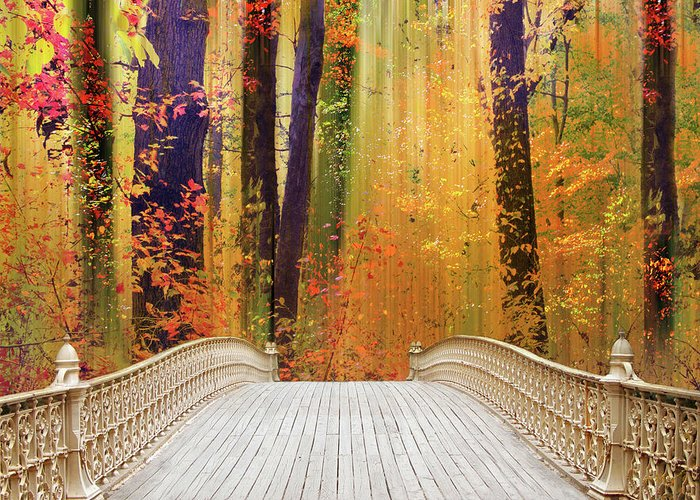 Footbridge Greeting Card featuring the photograph Pine Bank Splendor by Jessica Jenney