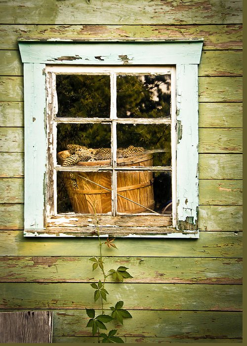 Window Greeting Card featuring the photograph Pine Cones In The Window by Maggie Terlecki