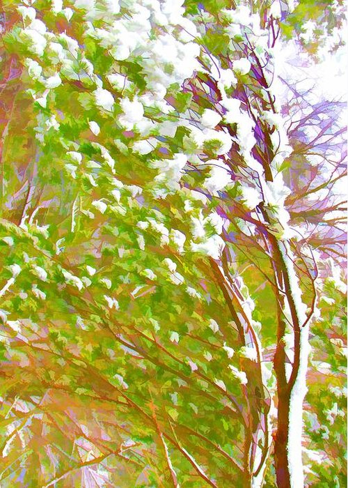 Beauty Greeting Card featuring the painting Pine Tree Covered With Snow by Lanjee Chee