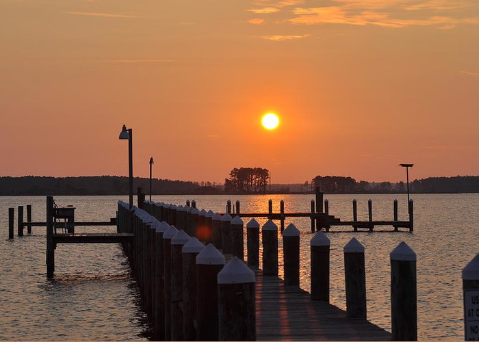 Piney Point Greeting Card featuring the photograph Piney Point Sunrise by Bill Cannon