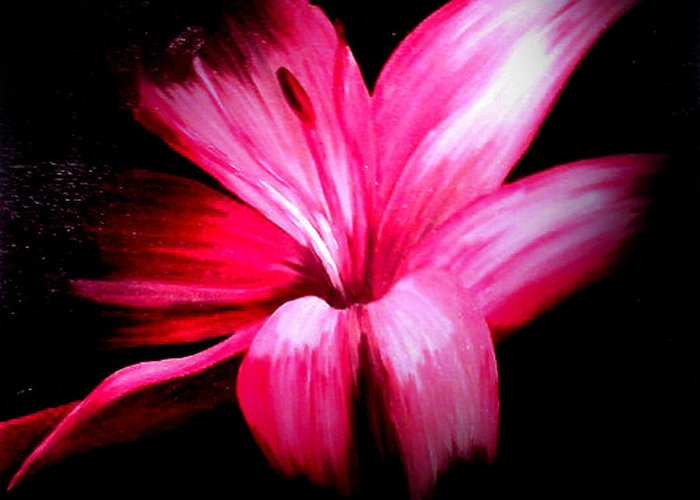 Pink Greeting Card featuring the painting Pink Lilly by Martin Williams