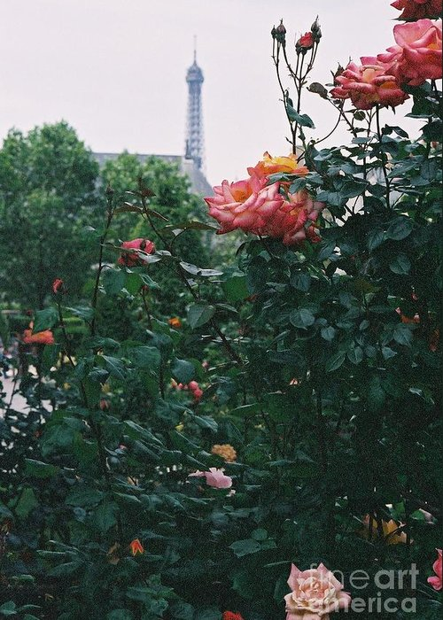 Roses Greeting Card featuring the photograph Pink Roses And The Eiffel Tower by Nadine Rippelmeyer