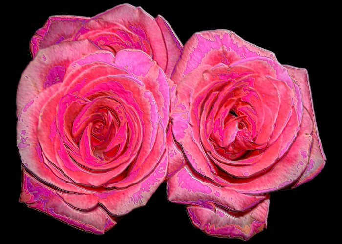 Two Pink Roses Greeting Card featuring the photograph Pink Roses With Enameled Effects by Rose Santuci-Sofranko
