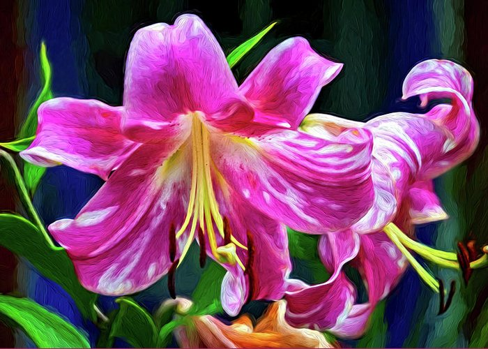 Flower Greeting Card featuring the photograph Pink Rules - Impasto by Steve Harrington