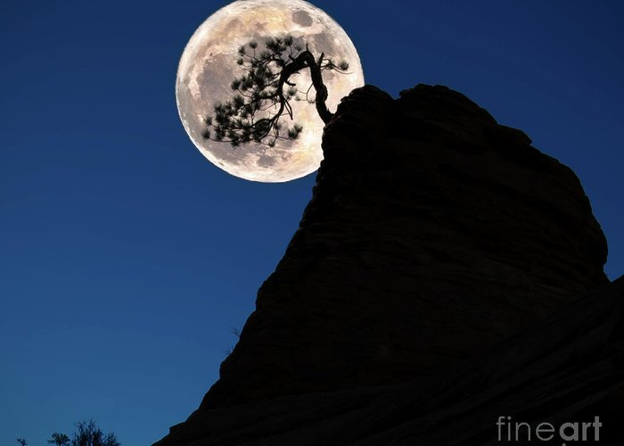Cr2017 Greeting Card featuring the photograph Pinon Pine And Moon Zion National Park by Jerry Fornarotto