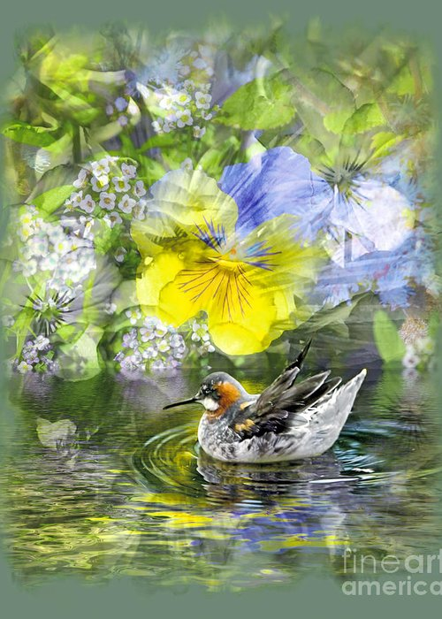 Floral Greeting Card featuring the photograph Pintail Pond by Chuck Brittenham