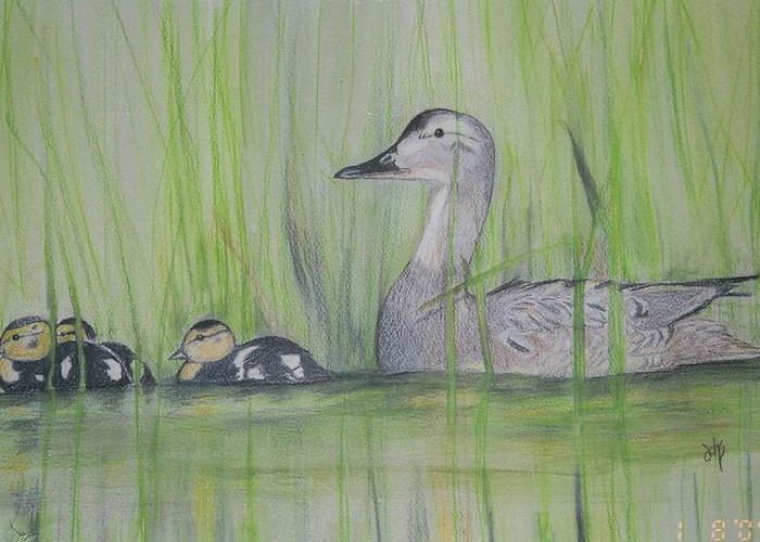 Pintail Ducks Greeting Card featuring the painting Pintails In The Reeds by Debra Sandstrom