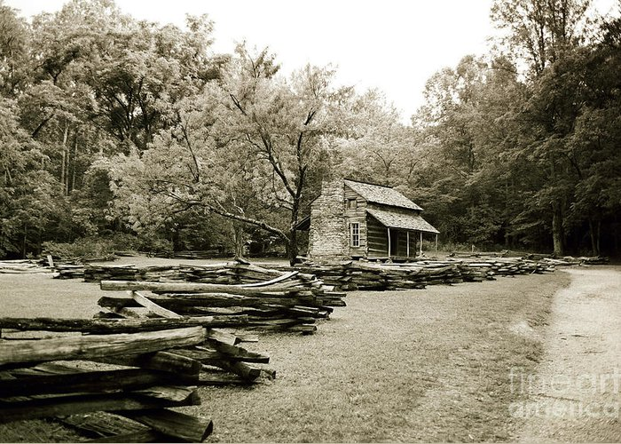 Cabin Greeting Card featuring the photograph Pioneers Cabin by Scott Pellegrin