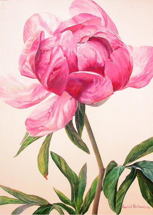 Floral Painting Greeting Card featuring the painting Pivoine 1 by Muriel Dolemieux