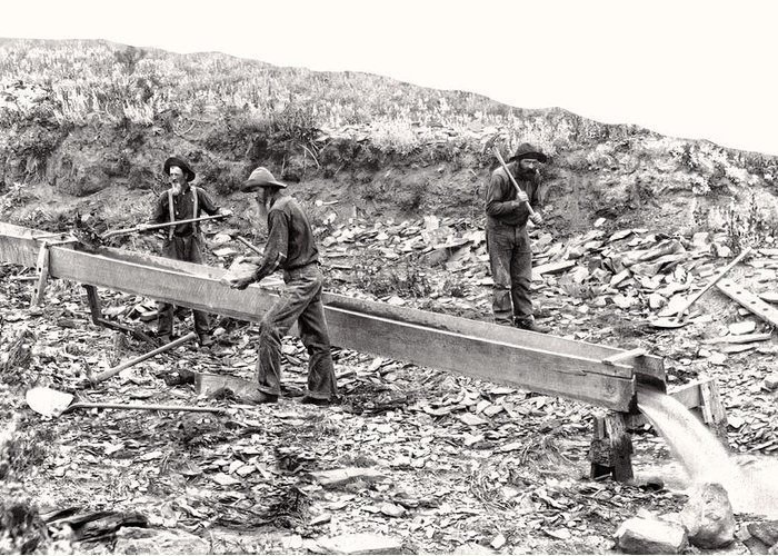 Gold Greeting Card featuring the photograph Placer Gold Mining C. 1889 by Daniel Hagerman