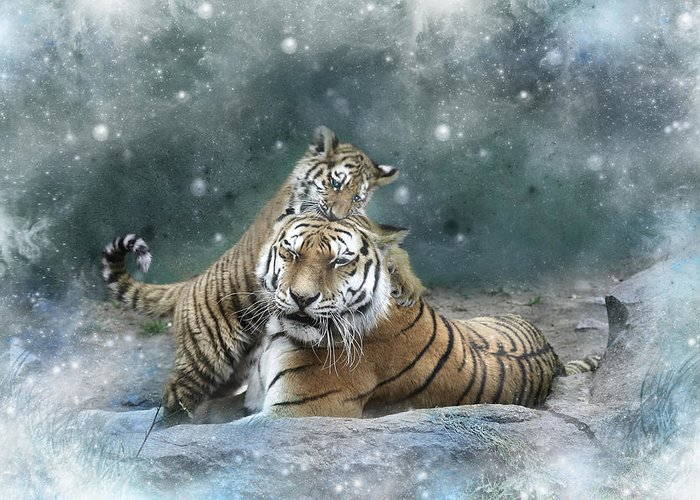 Tiger Greeting Card featuring the digital art Play With Me Mum by Julie L Hoddinott
