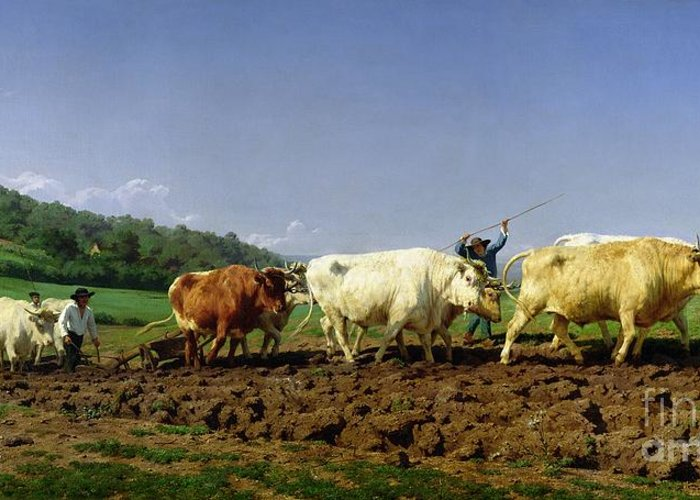 Ploughing Greeting Card featuring the painting Ploughing In Nivernais by Rosa Bonheur