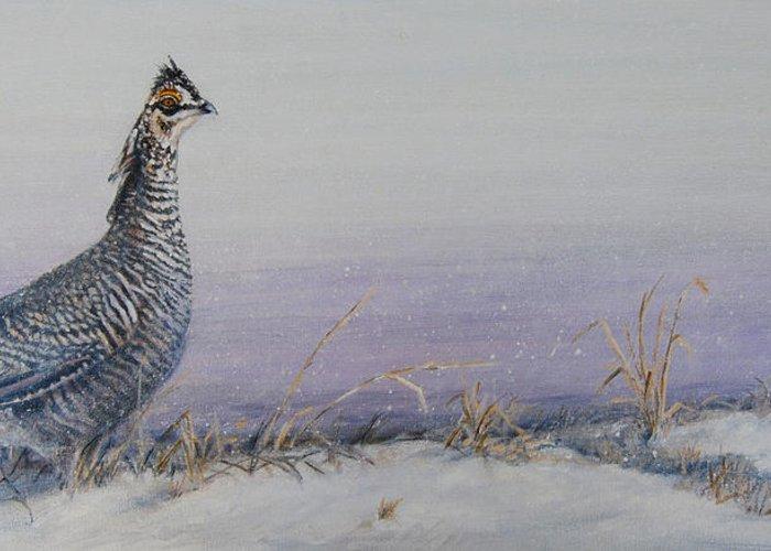 Prairie Chicken Greeting Cards